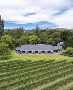 Rossendale Vineyard