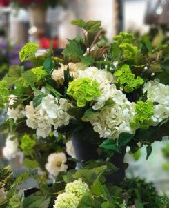 Lushingtons Garden Gifts & Café